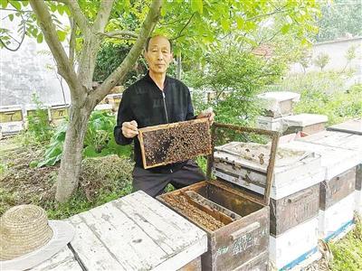 """刘晓圭:""""土蜂蜜""""甜了众乡邻"""