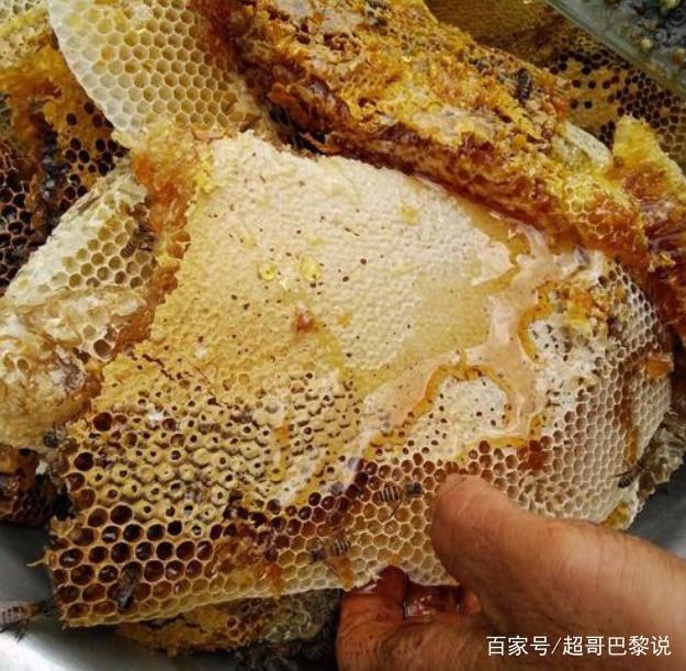 云南土蜂蜜,什么样的土蜂蜜属云南土蜂蜜?云南土蜂蜜特点